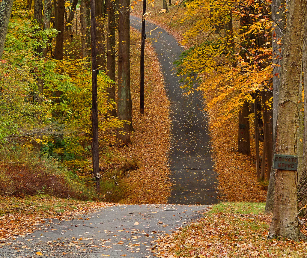 Fall Colors - country road
